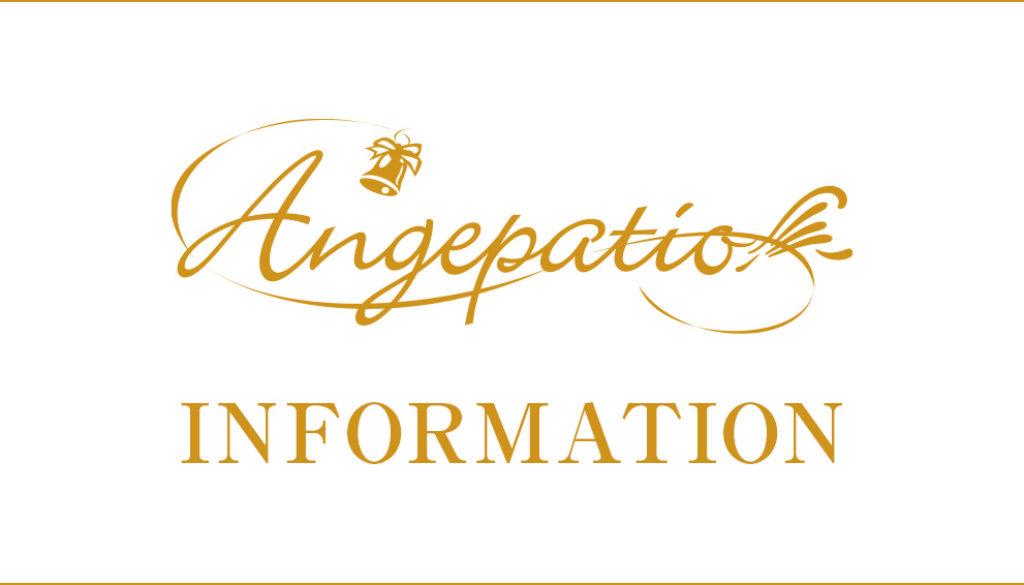 ange_info_sub_bnr
